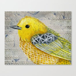 Yellow Warbler Tilly (Vintage Edition) Canvas Print