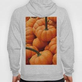 Autumn Pumpkins Hoody