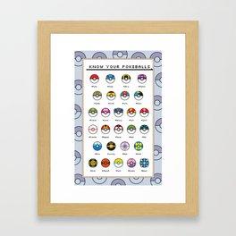 Know Your Pokeballs Framed Art Print