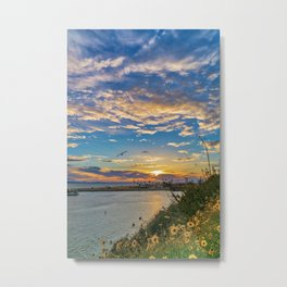 Daisys and Seagull at Sunset Metal Print