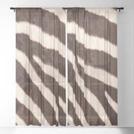 Zebra #decor #society6 #buyart Sheer Curtain