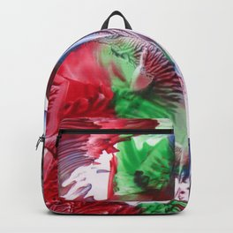 Gravity Lost Backpack