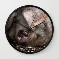 pigs Wall Clocks featuring Pigs Head by Goncalo
