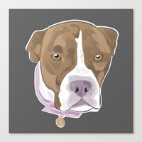 pitbull Canvas Prints featuring PITBULL by designrainey