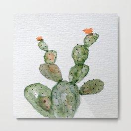 Prickling Pear Cactus Metal Print