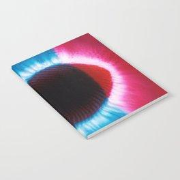 Aura Notebook