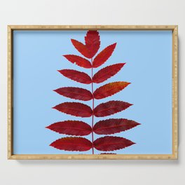 Red Sumac Leaves Serving Tray