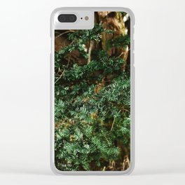 Needing Winter Clear iPhone Case