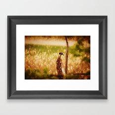 Bird Photography Framed Art Print
