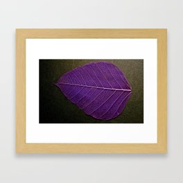 Life Lines * Purple Black * Thailand Bodhi Leaf Skeletons * Fine Art Print  Framed Art Print