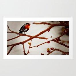Birdeds Art Print