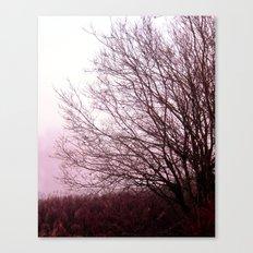 Along a Misty Bank Canvas Print