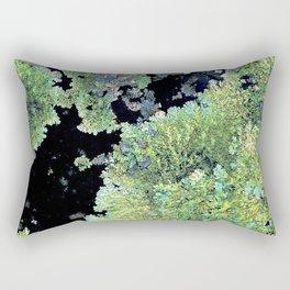 Shield Lichen Rectangular Pillow