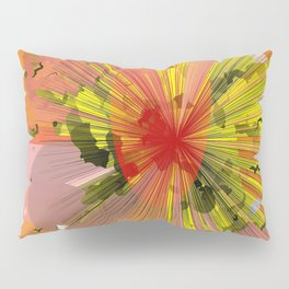 Color potpouri Pillow Sham