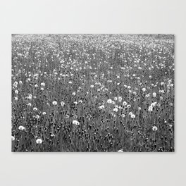 Never endless Canvas Print