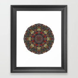 Hallucination Mandala 3 Framed Art Print