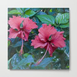 Pink Princess Flowers Metal Print