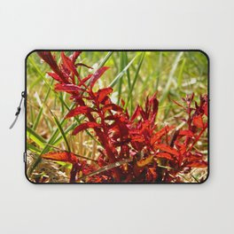 Fire Red Laptop Sleeve