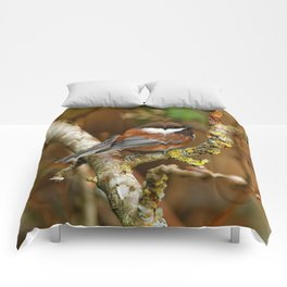 Chestnut-Backed Chickadee in the Cherry Tree Comforters