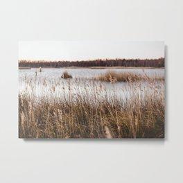 Lake Kaņieris, Latvia. || Golden Hour. || Morning Beauty. || Landscape. Metal Print