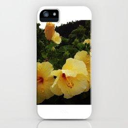 Hibiscus Hydration II iPhone Case
