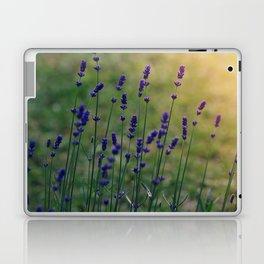 Field of Dreamflowers Laptop & iPad Skin