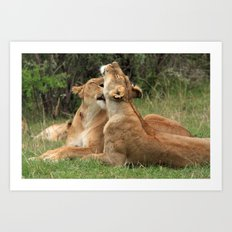Tenderness In The Wild Art Print