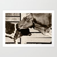 cows Art Prints featuring Cows by Ana Francisconi