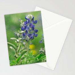 Bluebonnets Stationery Cards