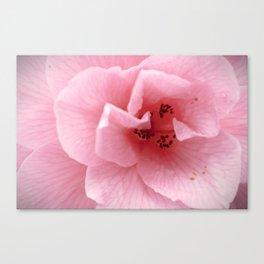 Flower in Macro Canvas Print