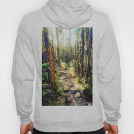 Zealand Forest Hoody