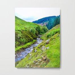 River. Metal Print