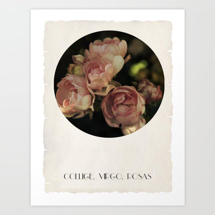 Collige, Virgo, Rosas Art Print