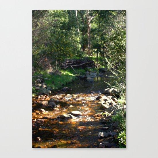 Stoney Creek Canvas Print