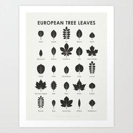 European Tree Leaves Art Print
