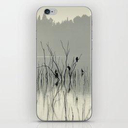 """""""Drying in the sun"""" iPhone Skin"""