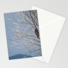 Red Shoulder Hawk Stationery Cards