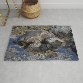 Turtle resting on the Rocks Rug