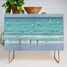 Falkland Island Seascape with Penguins Credenza