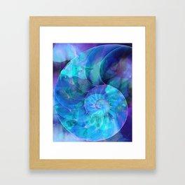 Blue Nautilus Shell  - Seashell Art By Sharon Cummings Framed Art Print