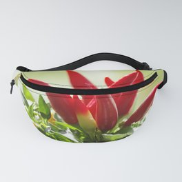 Chili peppers on the vine Fanny Pack