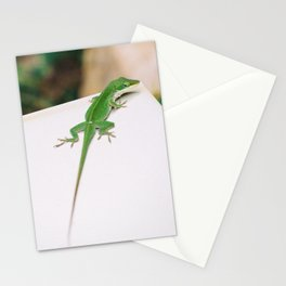 Anole Stationery Cards