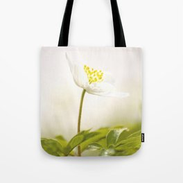 Wood Anemone Blooming in Forest Tote Bag