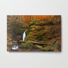 Autumn Scene Metal Print