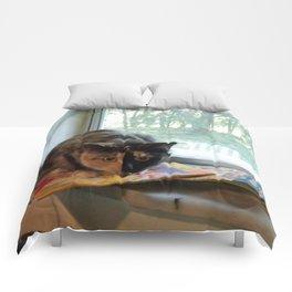 KELLY CATSON Comforters