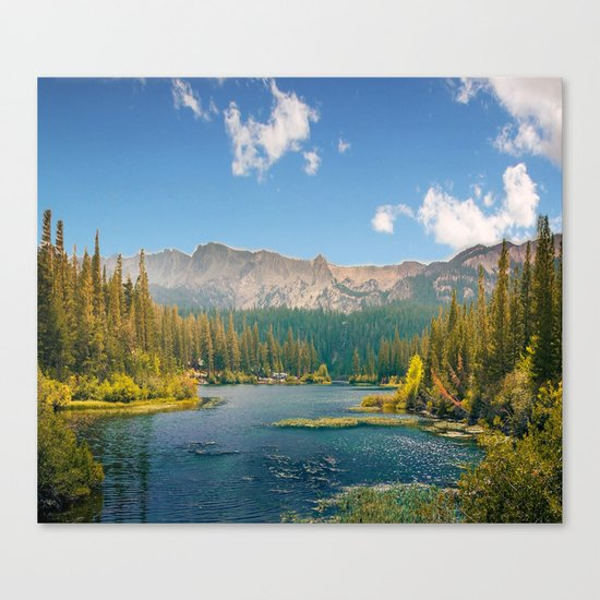 Penetrating in nature Canvas Print