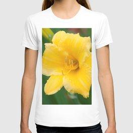 Yellow Daylily by Teresa Thompson T-shirt