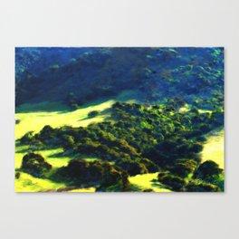 Salinas Valley Hillside - Salinas CA Canvas Print