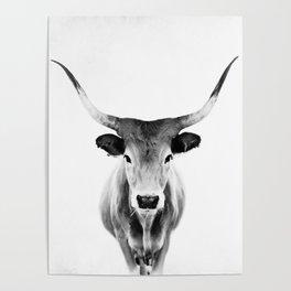 Honey - black and white Poster