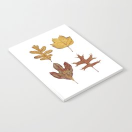 Fall Leaves Painting Notebook